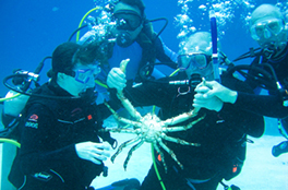 Diveheart offers scuba diving opportunities for individuals with disabilities