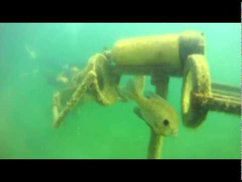 quarry dive