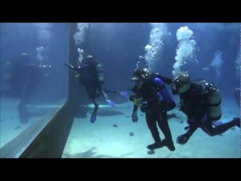 underwater scuba